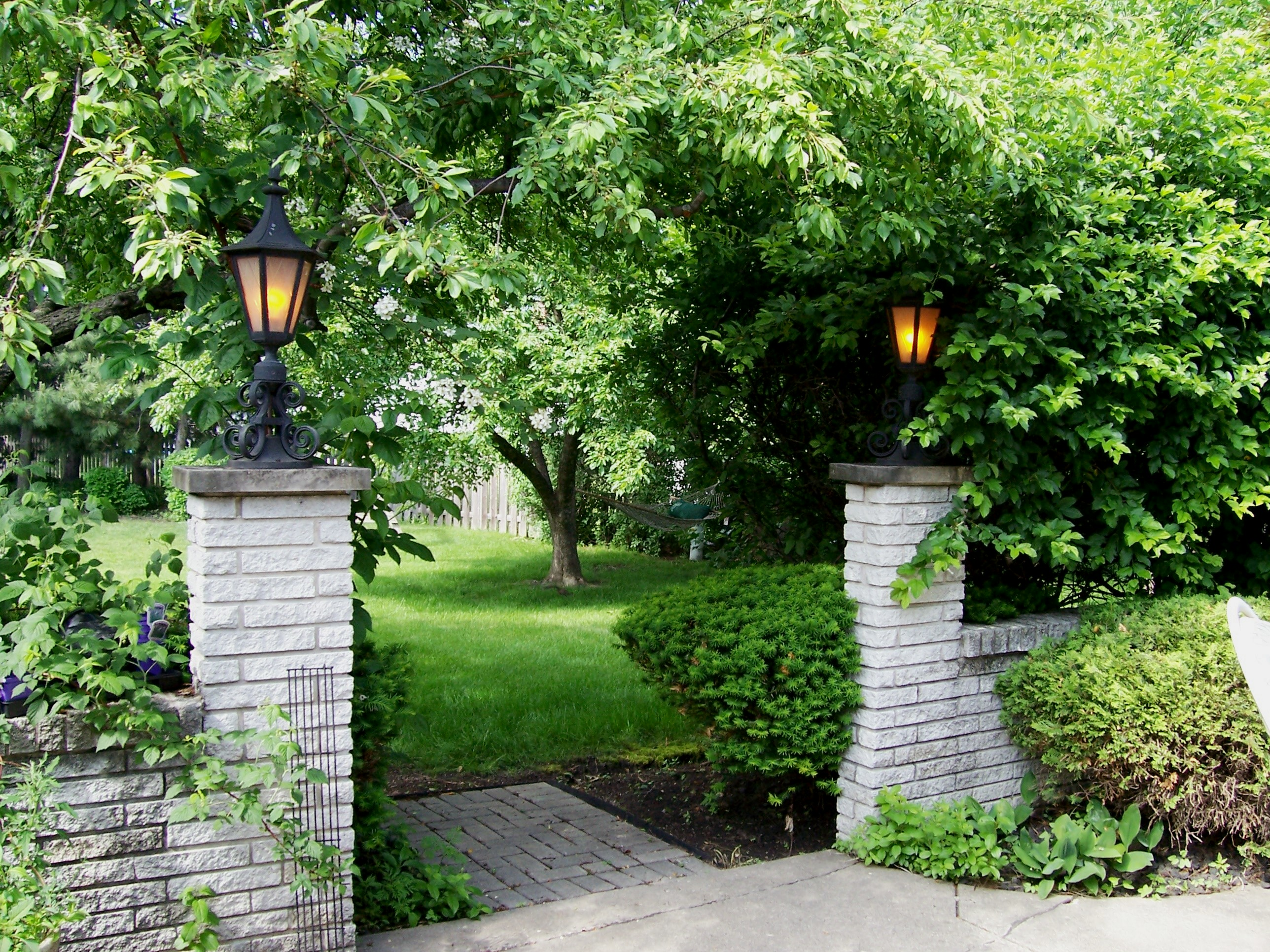 Information About Outdoor Plants Garden Guides