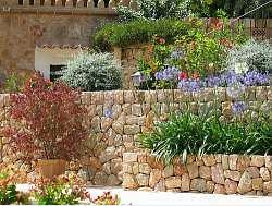 Mediterranean Garden Plan | Garden Guides