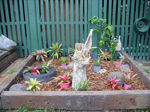 Gardening Ideas On A Budget find this pin and more on small budget gardening Budget Garden Ideas