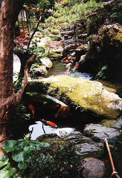 Backyard Pond Landscaping Ideas | Garden Guides