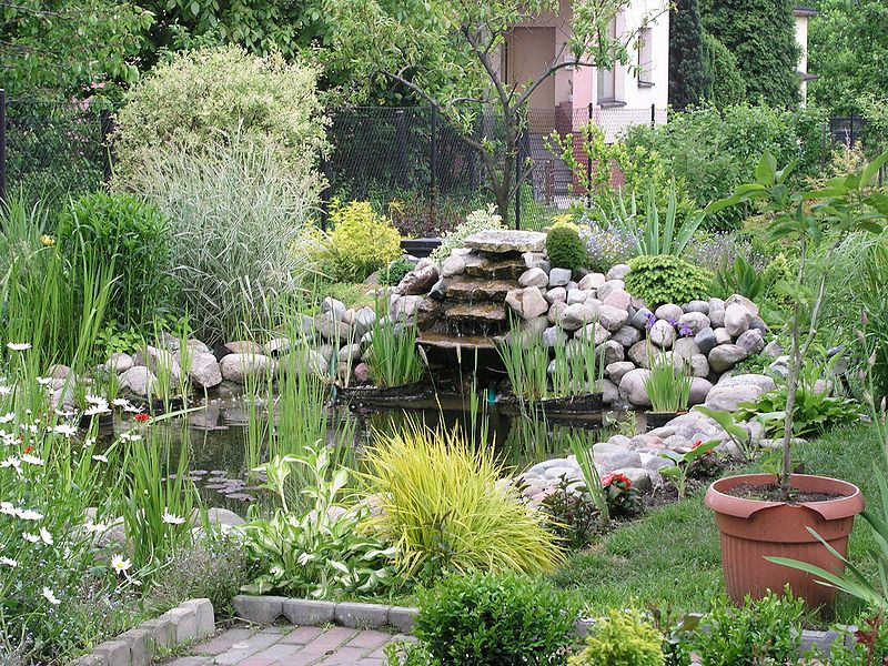 How to clean garden ponds garden guides for Garden pond cleaning