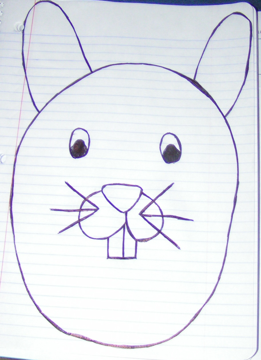 How to draw a bunny face | eHow UK