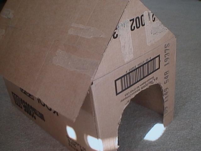 Como fazer uma casa para cachorro de papel o ehow brasil for Home material pictures