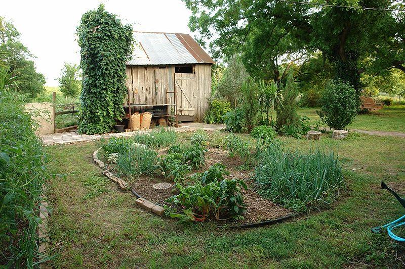 Backyard Vegetable Garden Business : Herb Gardens for Beginners image by Herb garden (Stevenmattern