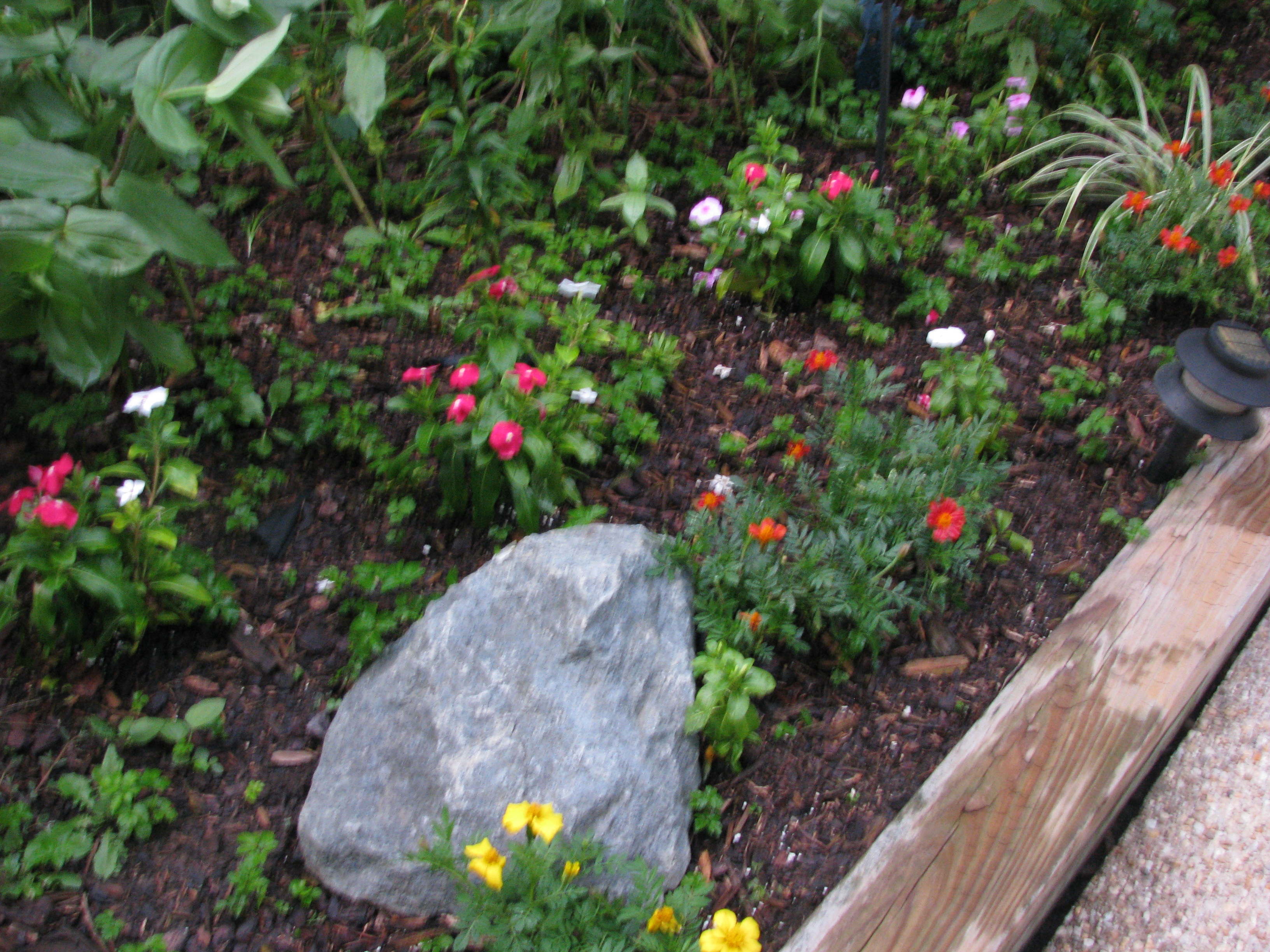 Easy Rock Garden Ideas Garden Design Ideas