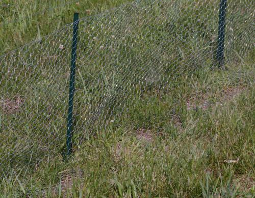 How to install a chicken wire fence ehow uk