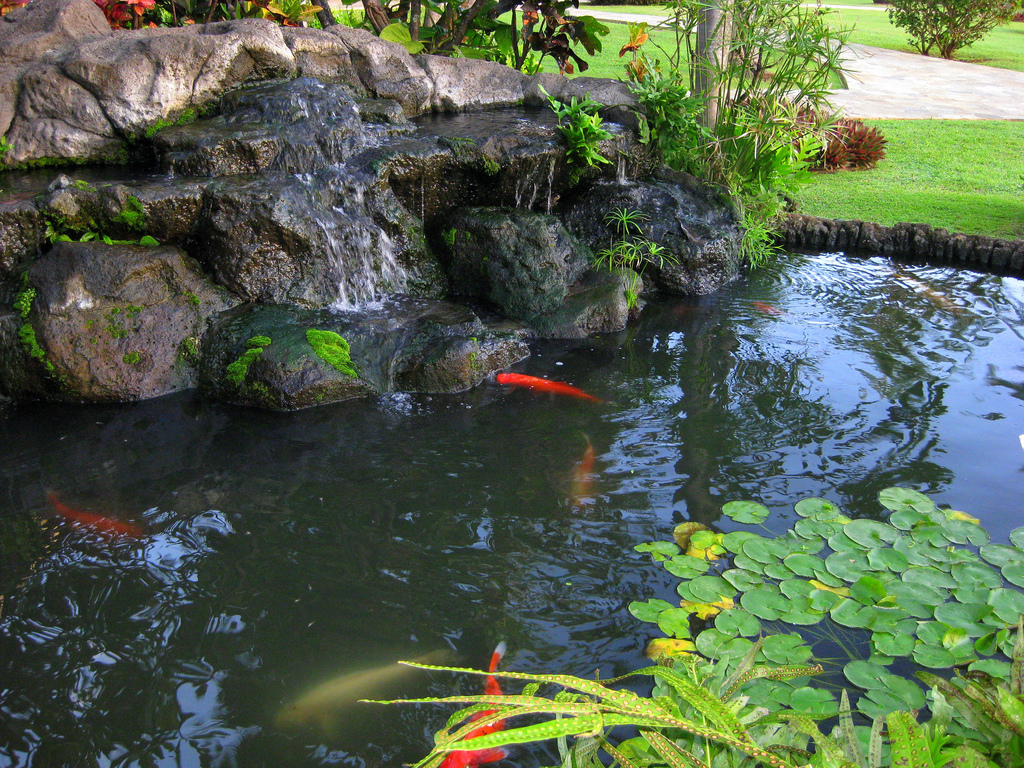 Homemade waterfall filter homemade free engine image for for Fish pond waterfall ideas