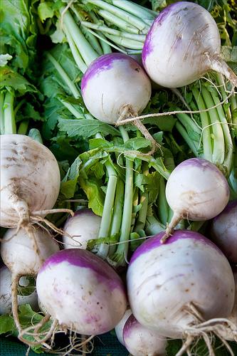 how to grow turnips in your garden