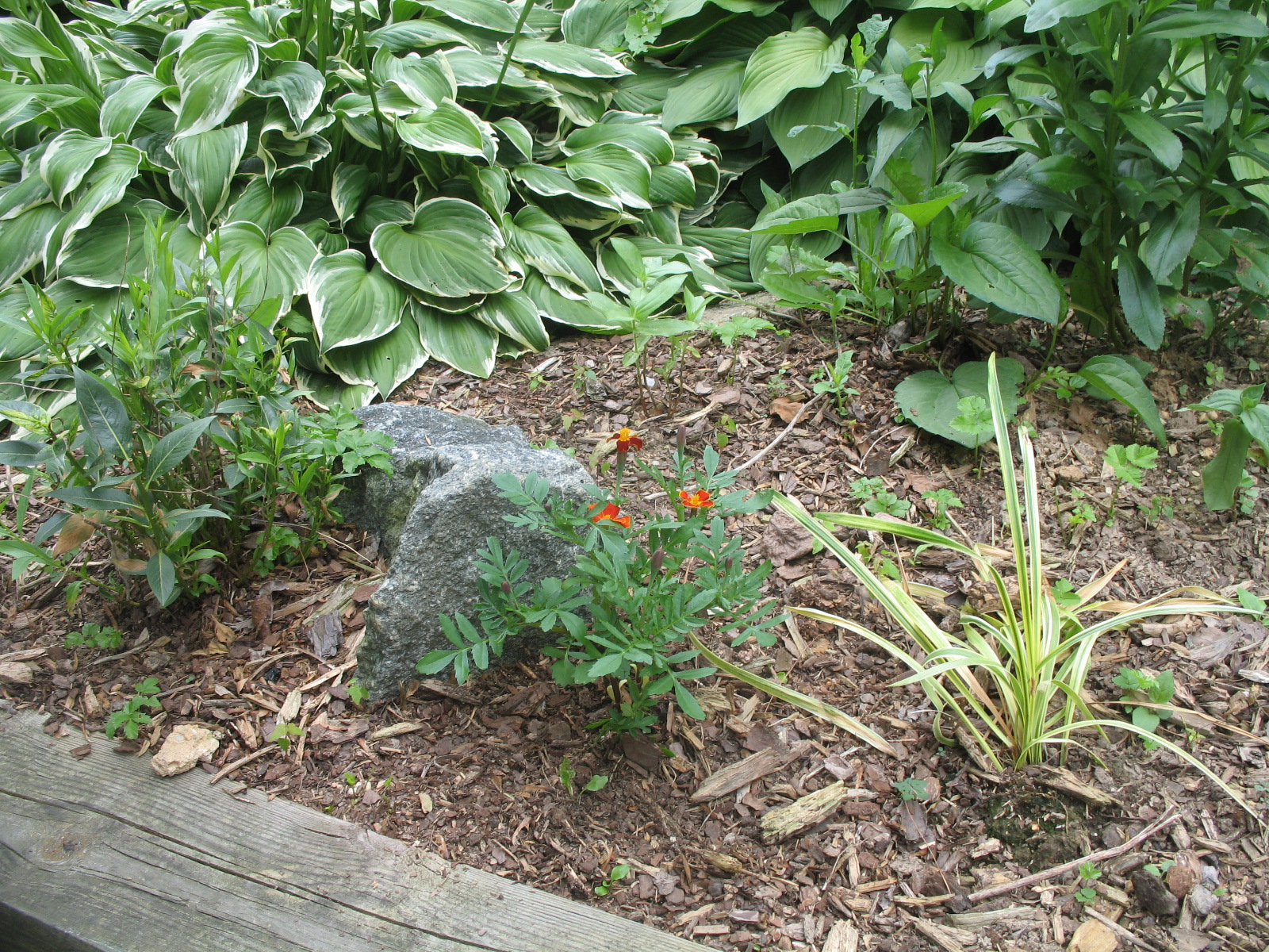 Landscaping Ideas With Mulch ~ Best ideas about mulch landscaping ...