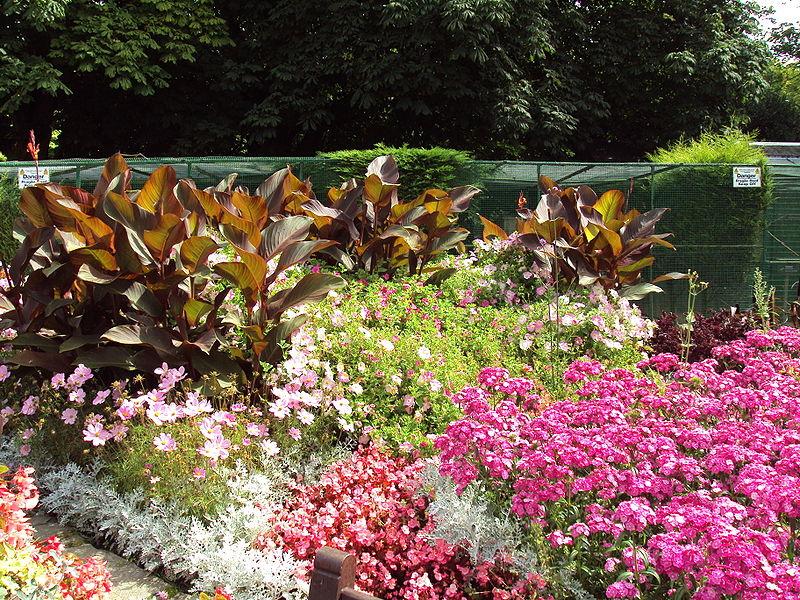 Ideas For Planting A Flower Garden Image By Flower Garden Benkid77